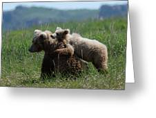 Grizzly  Mother And A Cub In Katmai National Park Greeting Card