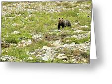 Grizzly Watching People Watching Grizzly No. 2 Greeting Card