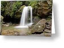 Grotto Falls Great Smoky Mountains Greeting Card by Jemmy Archer