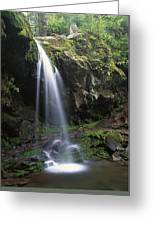 Grotto Falls In The Great Smokies Greeting Card