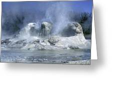 Grotto Geyser - Yellowstone National Park Greeting Card