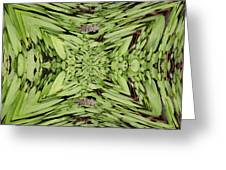 Ground Cover Vortex Greeting Card