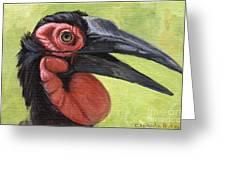 Ground Hornbill Greeting Card