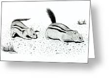 Ground Squirrels Greeting Card