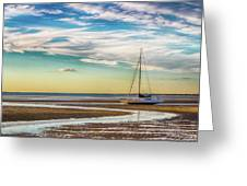 Grounded On The Beach Greeting Card