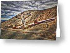 Grounded Plane Wreck Greeting Card