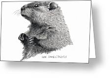 Groundhog Or Woodchuck Greeting Card