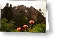 Grounds At Lake Louise Greeting Card