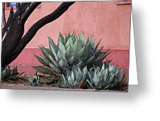 Group Of Cacti Greeting Card