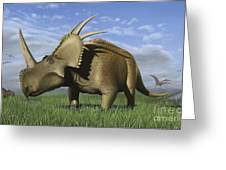 Group Of Dinosaurs Grazing In A Grassy Greeting Card