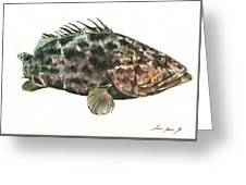 Grouper Fish Greeting Card