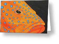 Grouper Head Greeting Card