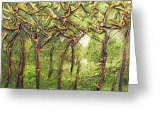 Grove Of Trees Greeting Card