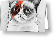 Grumpy Cat As David Bowie Greeting Card by Olga Shvartsur