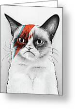 Grumpy Cat As David Bowie Greeting Card
