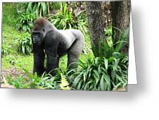 Grumpy Gorilla IIi Greeting Card