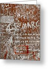 Grunge Background Greeting Card by Carlos Caetano