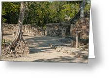 Grupo Coba At The Coba Ruins  Greeting Card