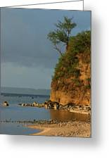 Guam- Keeping Watch Greeting Card