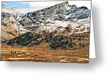 Guanella Pass Colorado Greeting Card by Bronze Riser