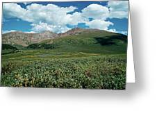 Guanella Pass Mt Bierstadt Greeting Card by Michael Kirsh