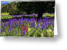 Guardian Of The Lupine Greeting Card