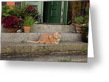 Guarding The Door Greeting Card