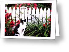 Guarding The Rose Garden Greeting Card