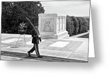 Guarding The Unknown Soldier Greeting Card
