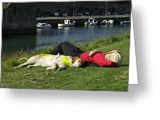 Guide Dog Relaxing Greeting Card