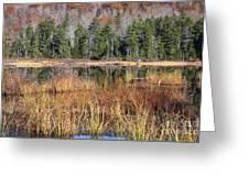 Guinea Pond - Sandwich New Hampshire Usa Greeting Card
