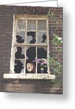 Guinness Window Watcher Greeting Card