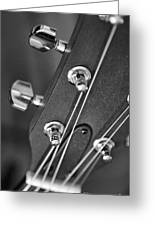 Guitar Study A Greeting Card