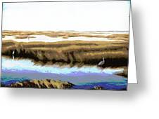 Gulf Coast Florida Marshes I Greeting Card
