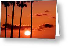 Gulf Coast Sunset Greeting Card