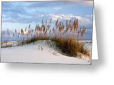 Gulf Dunes Greeting Card