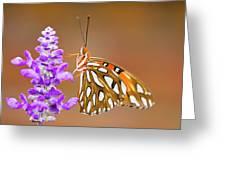 Gulf Fritillary Greeting Card