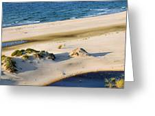 Gulf Of Mexico Dunes Greeting Card