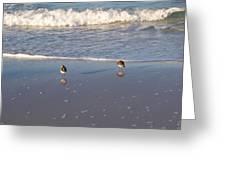 Gulf Shore 2 Greeting Card