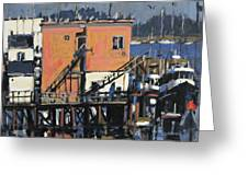 Gulls Aloft Greeting Card