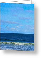 Gulls And Water Greeting Card