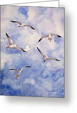 Gulls Is Flight Greeting Card