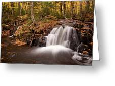 Gully Lake Cascades #1 Greeting Card
