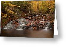 Gully Lake Trail Cascades #2 Greeting Card