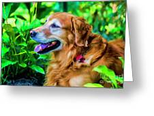 Gus In Flower Bed 10357t2a Greeting Card