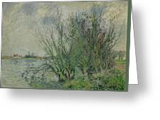 Gustave Loiseau 1865 - 1935 Willows, Edges Oise Or On The Banks Of The Oise Greeting Card