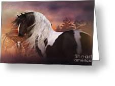 Gypsy On The Farm Greeting Card