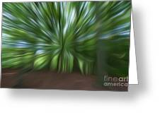 Haagse Bos. Oil Painting Effect. Greeting Card