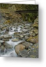 Haast Waterfall Greeting Card