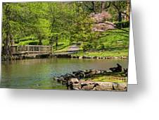 Hagerstown City Park Greeting Card